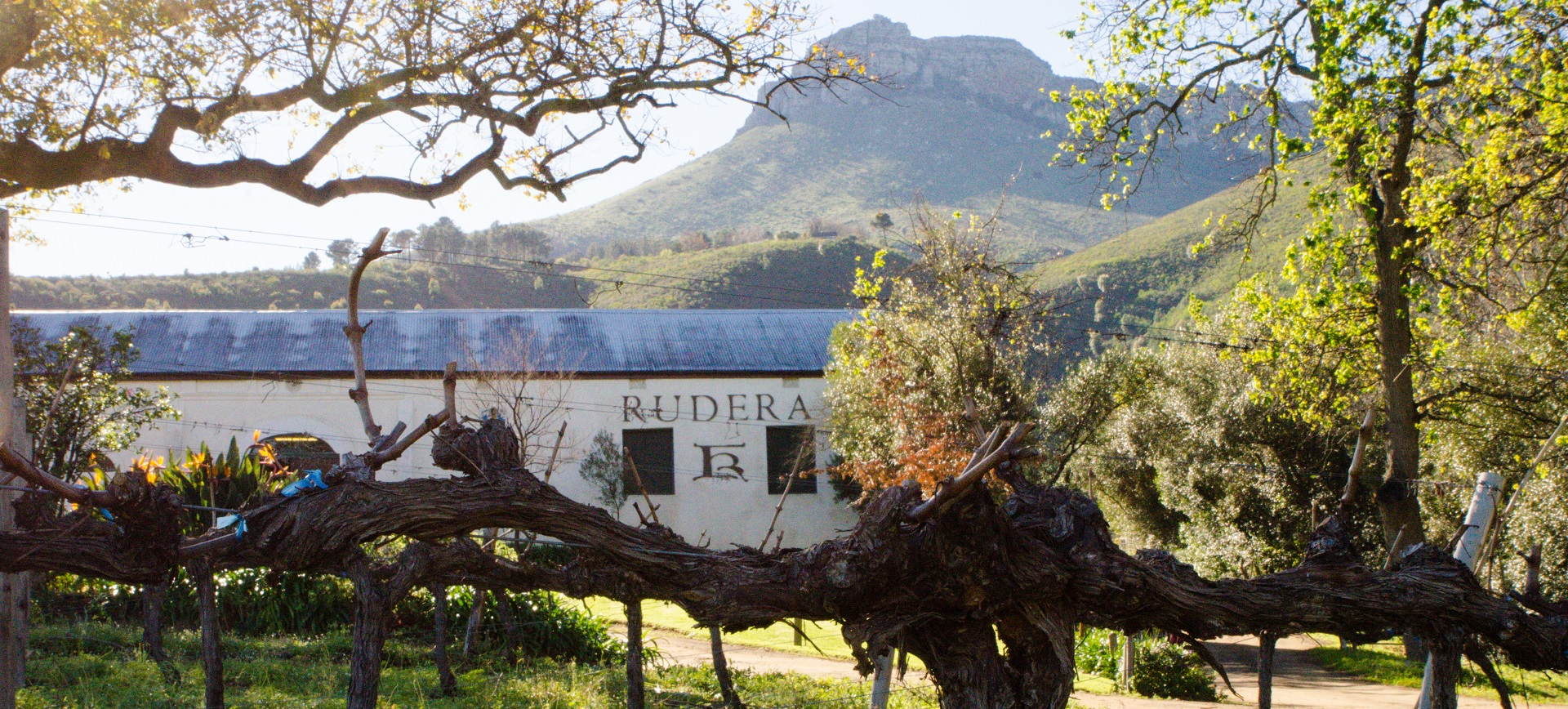 Rudera Wines - is situated in Jonkerhoek Valley, Stellenbosch